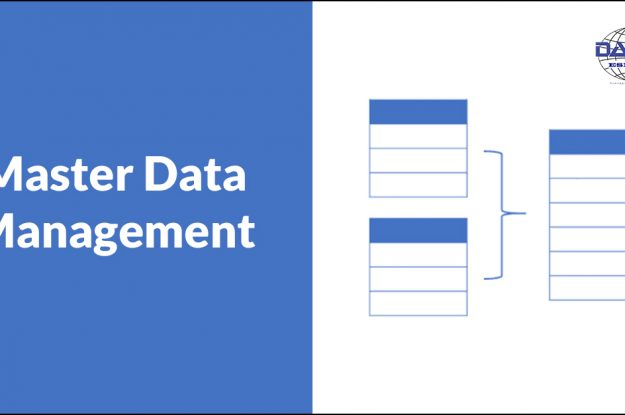 Master Data Management según DAMA
